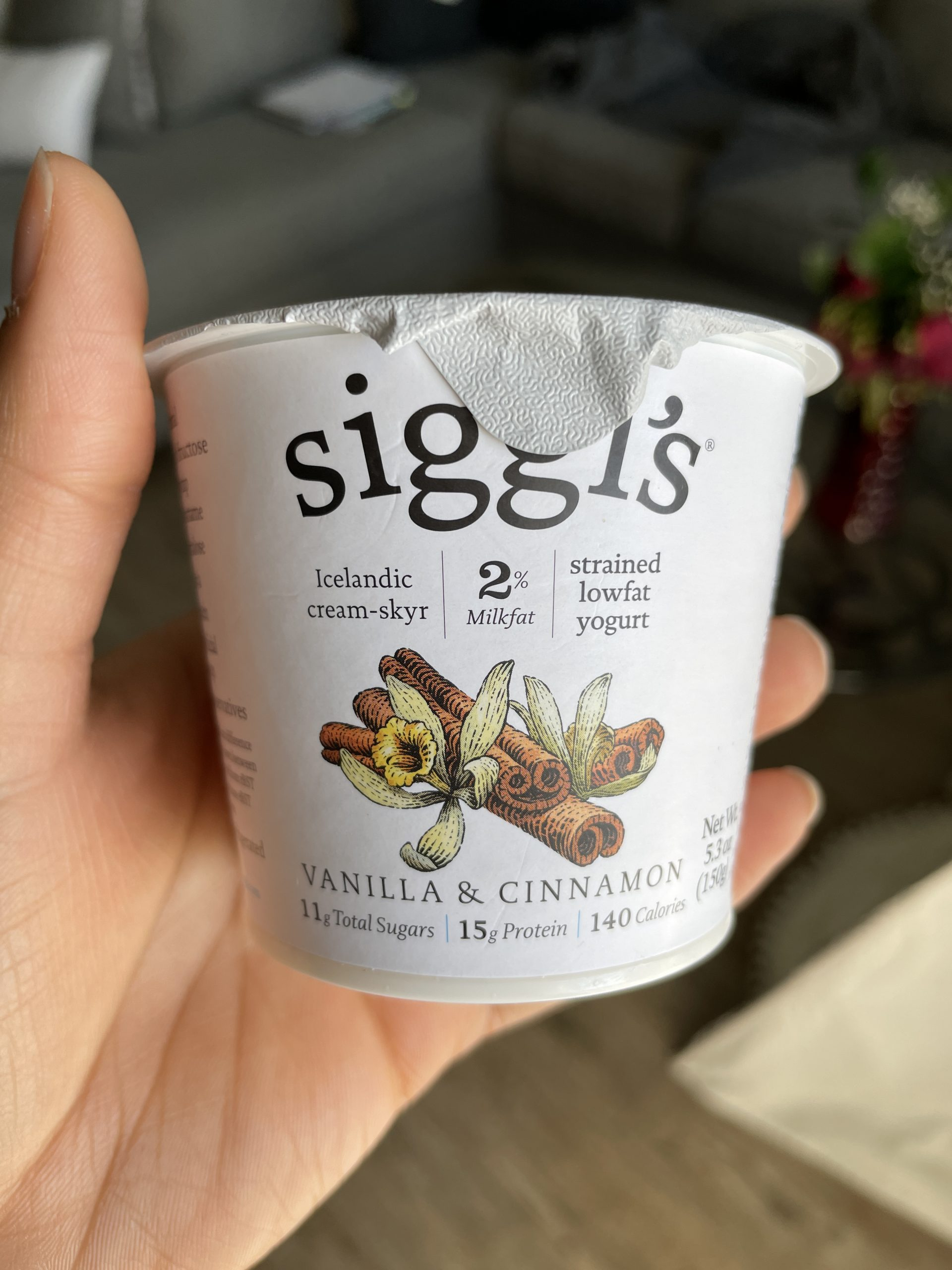 siggi's vanilla & cinnamon yogurt | High Protein Sweet Treat for Snack or Dessert